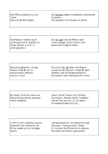 Erfreut Pflanzenteile Arbeitsblatt Galerie - Arbeitsblätter für ...