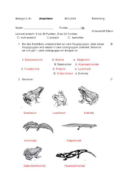 Lernkontrolle Amphibien / Natur - Mensch - Gesellschaft / Biologie ...