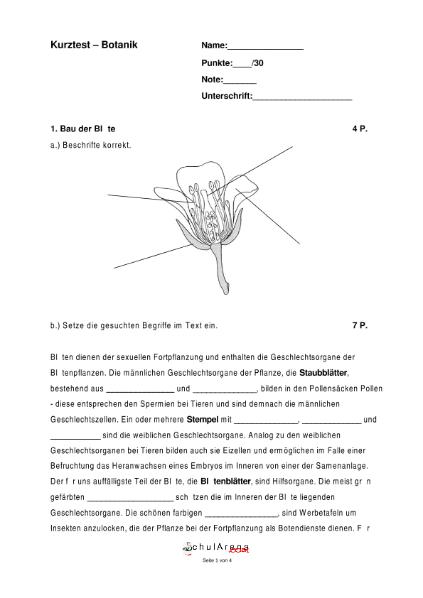 Botanik - 4 / Natur - Mensch - Gesellschaft / Biologie / SchulArena ...