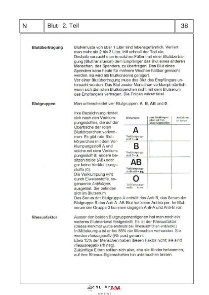 Blutgruppen / Natur - Mensch - Gesellschaft / Biologie / SchulArena ...